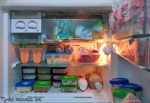 meu freezer