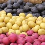 Tipos de batatas e o que você pode fazer com elas
