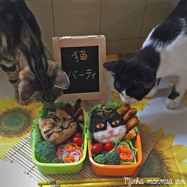 oniguiri cat